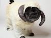 pug-chubbs-costume-wampug