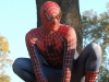 spider_man_by_mesocoscia